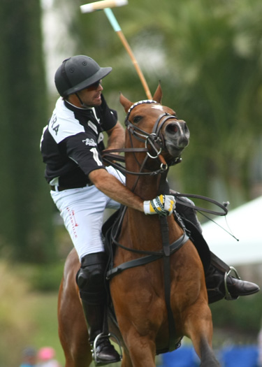 alexpacheco us polo open championships florida ipc polo magazine 6
